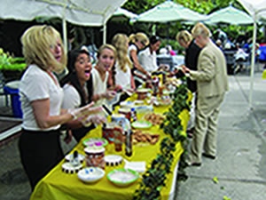 Photo of the 2013 Hospice Rossmoor Fashion Show & Ice Cream Social